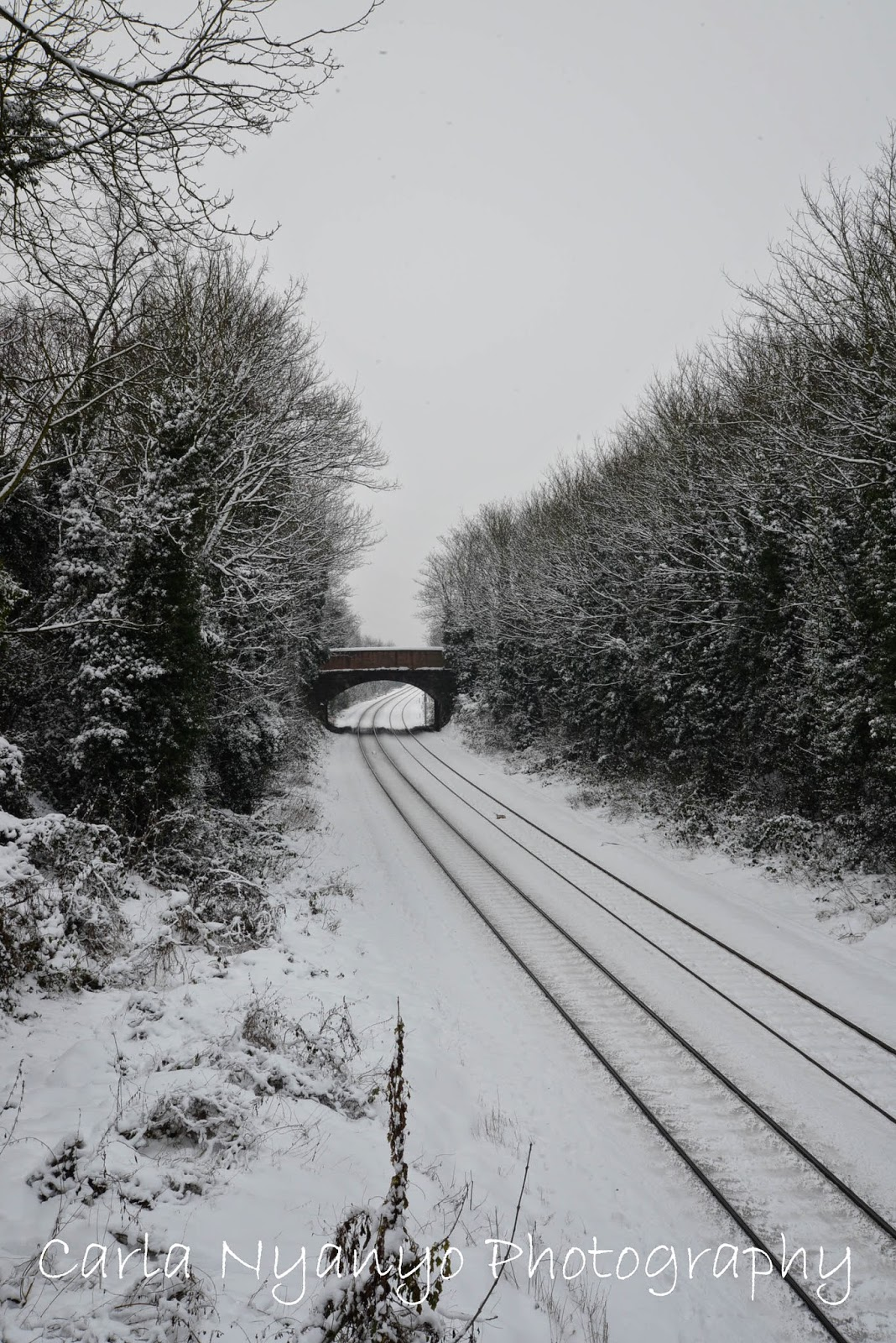 snow and train tracks