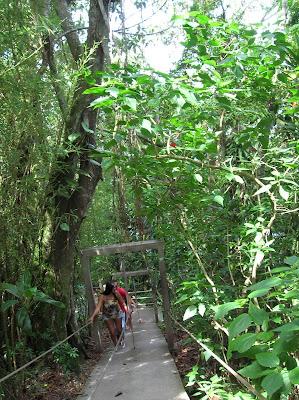 Senda Verde en el Morro de Urca, Río, Brasil, La vuelta al mundo de Asun y Ricardo, round the world, mundoporlibre.com