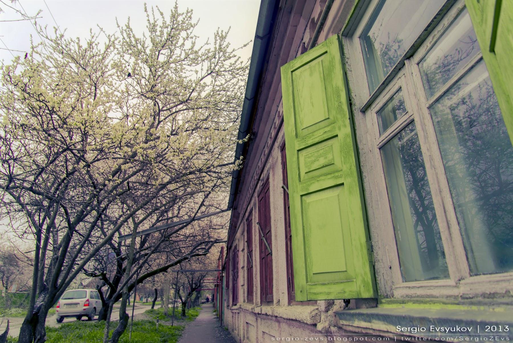 Spring, окна, деревья в цвету, ставни, деревня, станица, природа