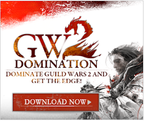 Guild Wars 2 Domination Guide
