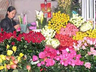 hoa da lat gia vuon