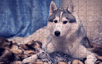 Affection puzzle