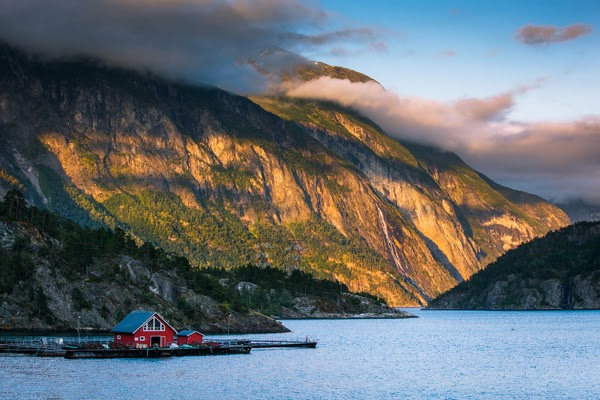 Colors of Norway by Jan Stel