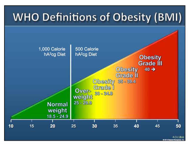 fettkiller lebensmittel tabelle