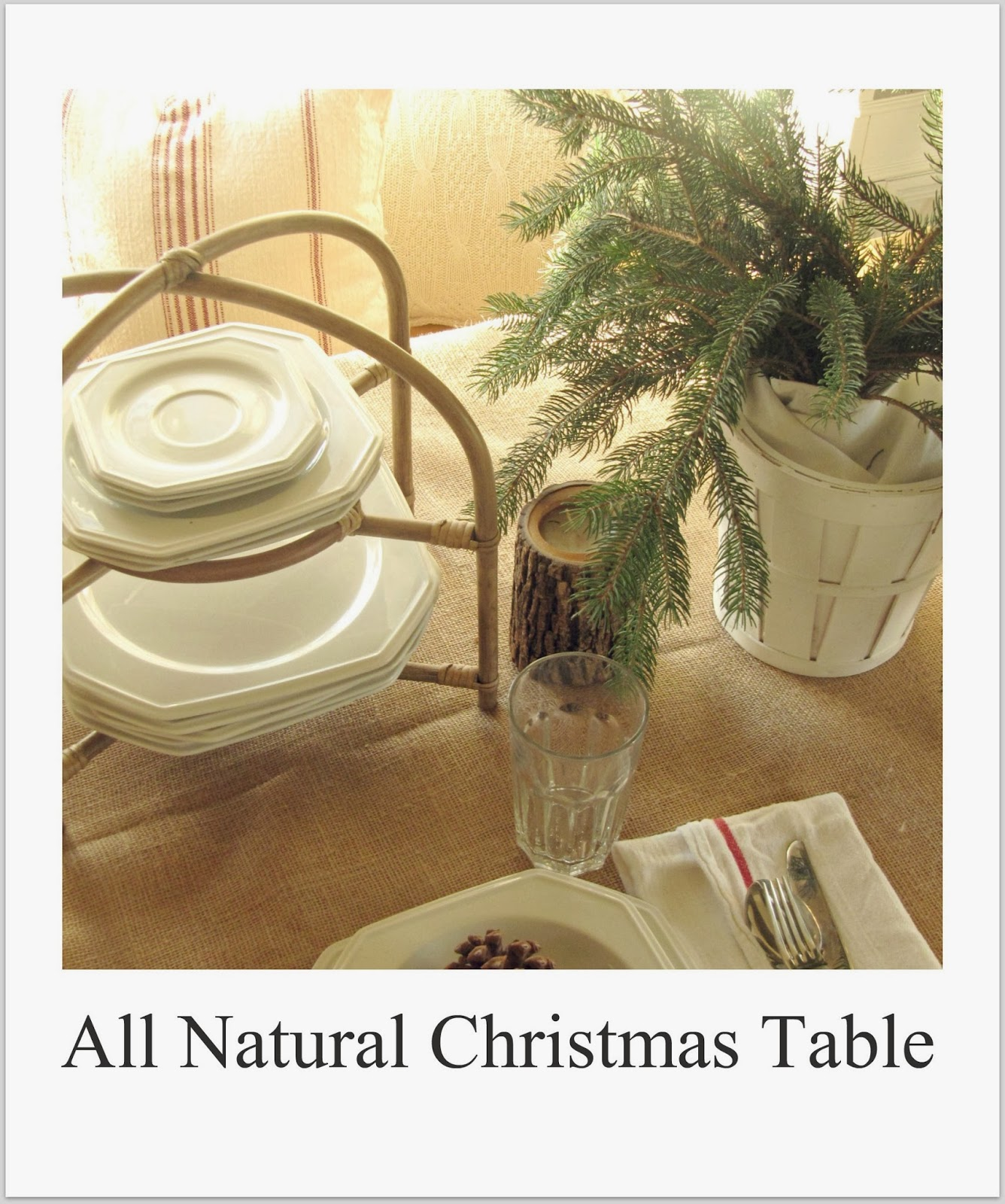 http://thewickerhouse.blogspot.com/2011/12/all-natural-christmas-table.html