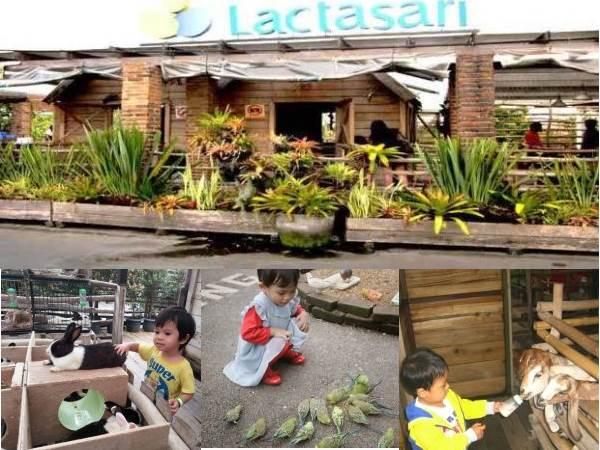 Laktasari Mini Farm wisata anak di bandung