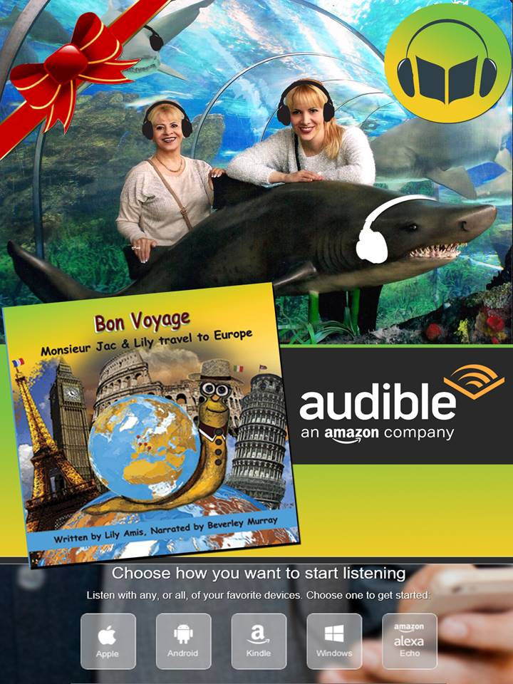 AUDIO BOOK BON VOYAGE
