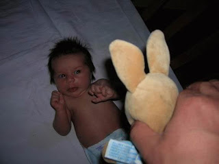 Funny picture: baby scare
