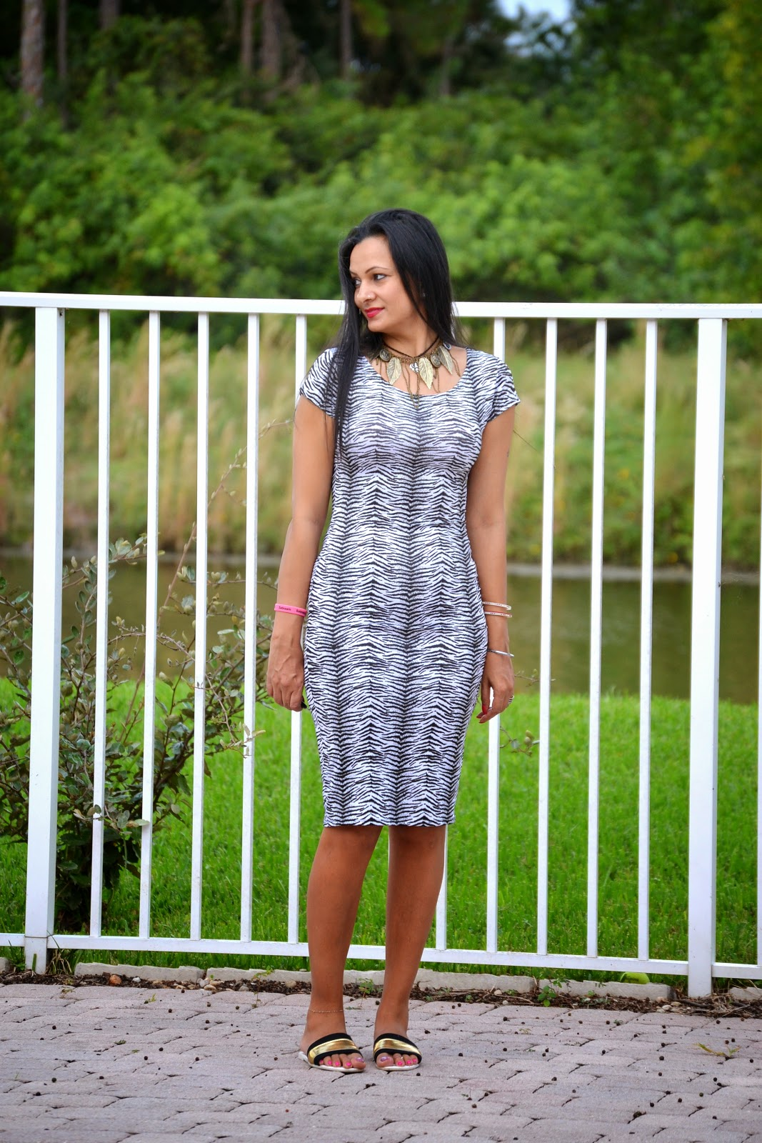 dresses party dresses bodycon zebra print dress shoes online cheap shoes www.sandysandhu.co