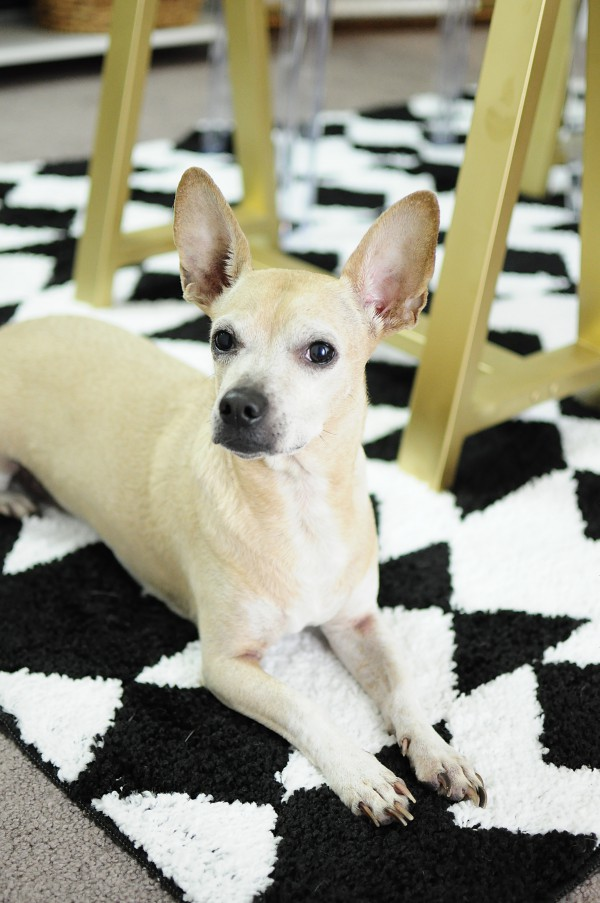 Pee Wee the pooch always makes a cameo in Monica's posts- he is so cute! Plus, that rug is phenomenal.