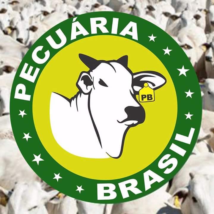 Pecuária Brasil