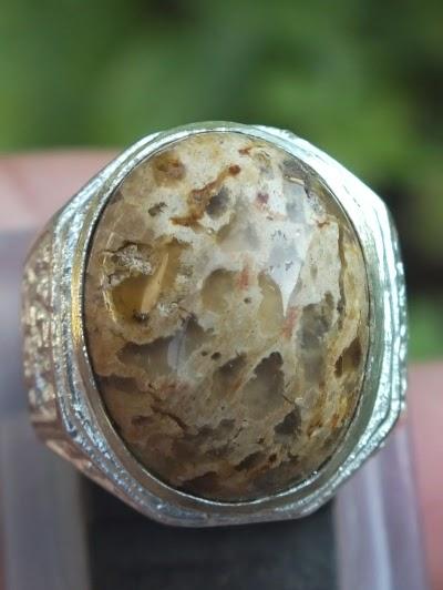 cincin batu fosil kayu