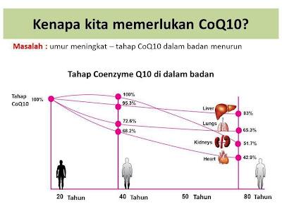 semakin meningkat usia coq10 semakin sikit dihasilkan