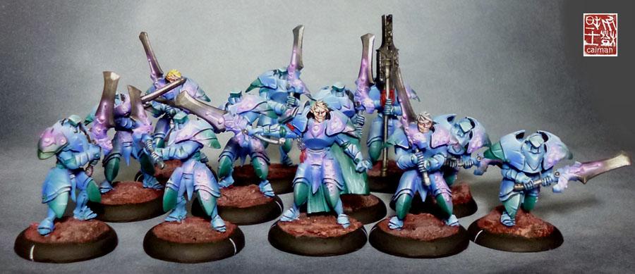 [Vente] Armée scyrah et hauts elfes P1070096