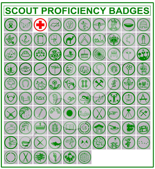 Scout Proficiency Badges