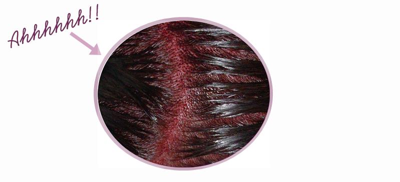 tout mon crne tait rougeviolet et cest la que je me suis demand quoi jallais ressembler - Coloration Temporaire Rouge