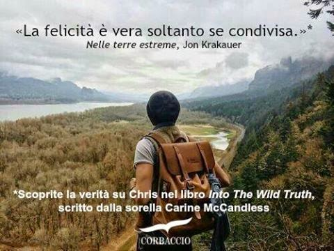into the wild truth essay Free essay: human nature tells us to want what we can't or don't have  everything from  chris mccandless' search for truth in jon krakauer's into the  wild.