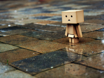 Danbo on Stone Pavement