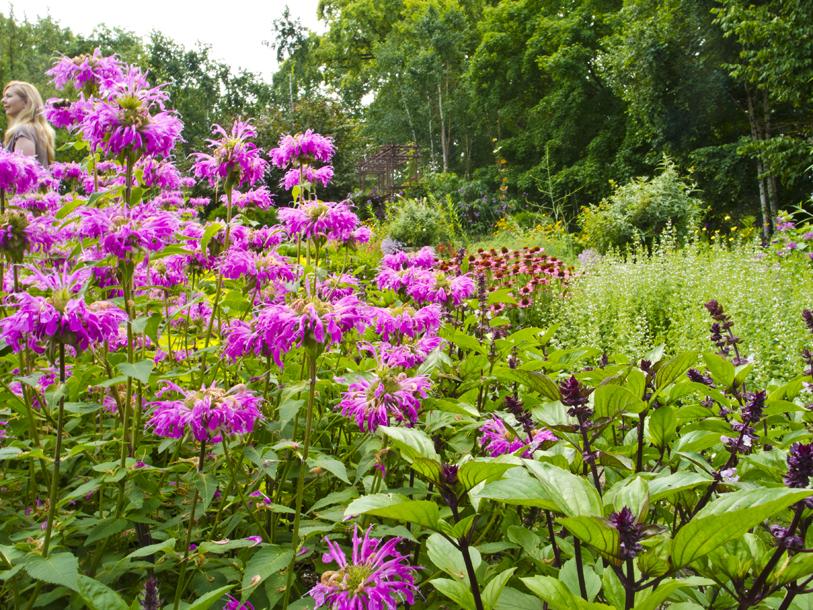 Wisconsin explorer olbrich gardens madison for Olbrich botanical gardens hours