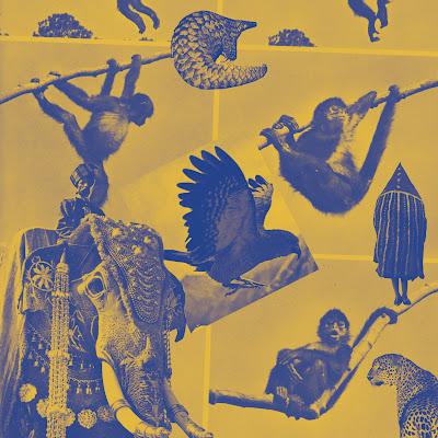Discosafari - MUGWUMP - Boutade - International Feel Recordings