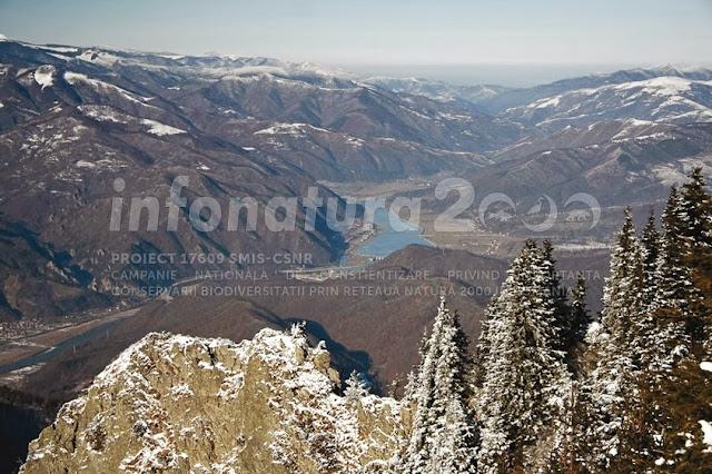 valea oltului vedere cozia sit natura 2000