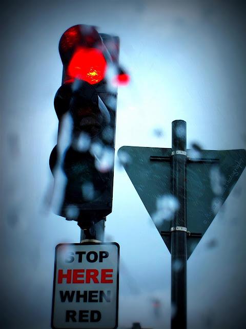 traffic light in the rain