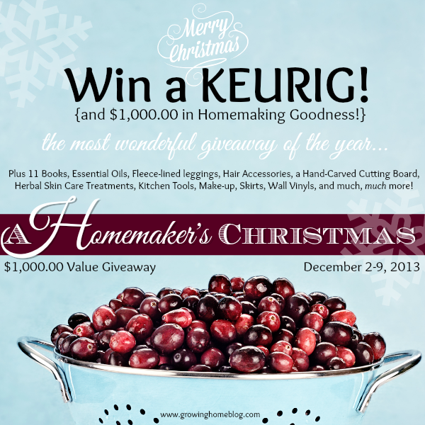 A Homemaker's Christmas Giveaway