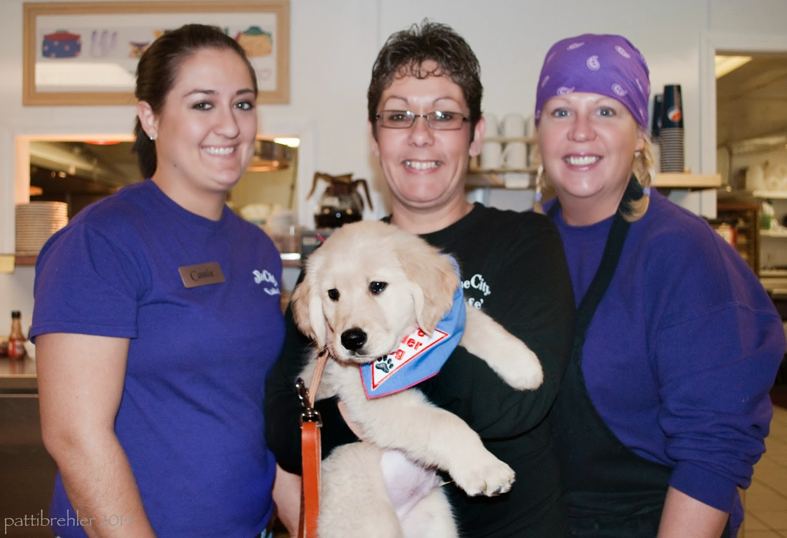 Three women face the camera. The woman in the middle is holding a golden retriever puppy, barely! The women on the left and right are wearing purple shirts, the woman in the middle is wearing a blck sweartshirt, and glasses. The woman on the right is wearing a purple scarf on her head.