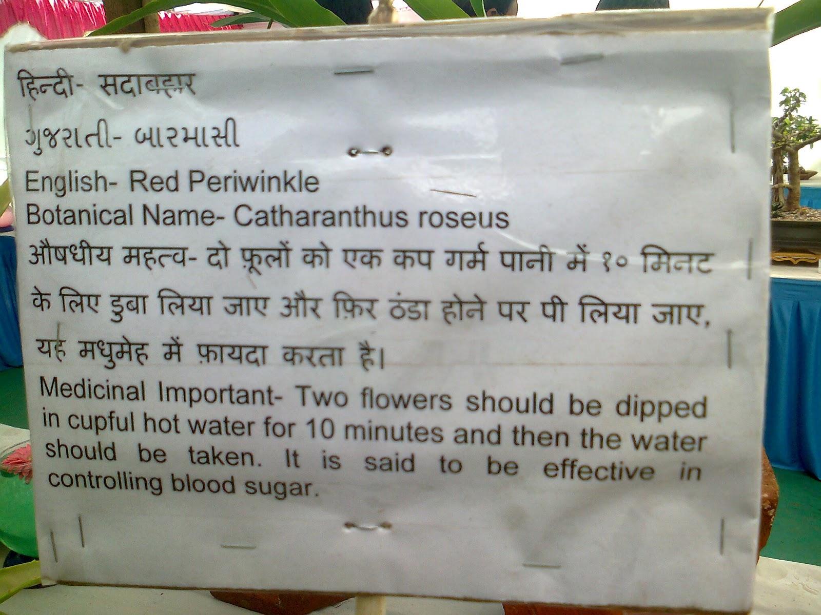 Horticulture colleges ib
