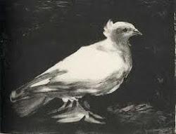 Picasso La paloma