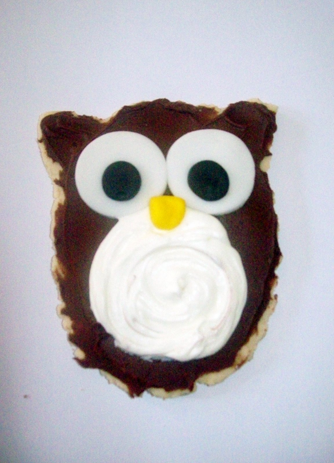 Cakes By Design: Owl Cookies