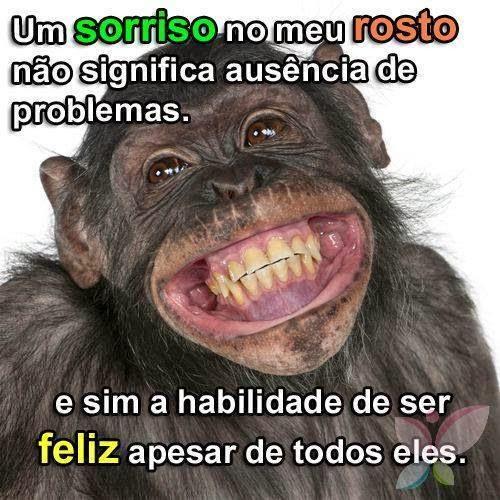 Frase sobre sorriso