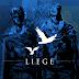 Liege : on Steam 2014