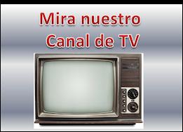 RBN TV ONLINE