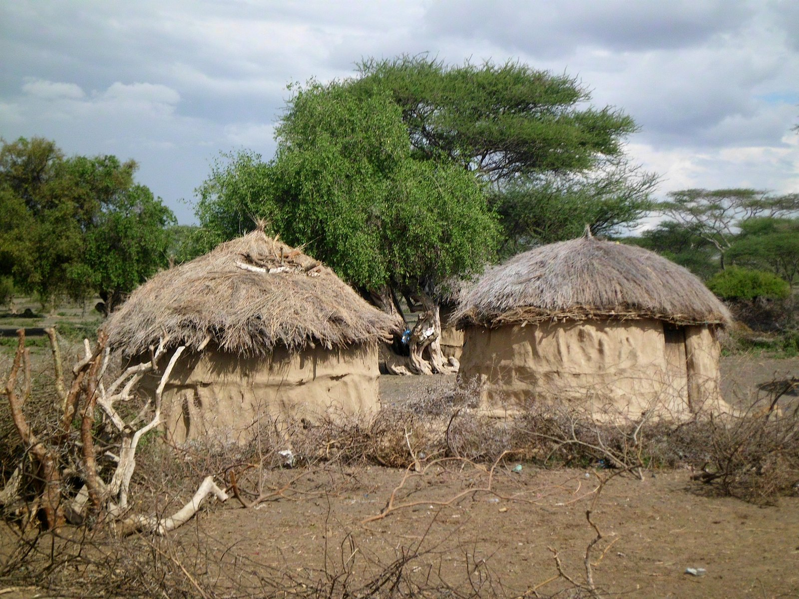 Maasai Women Build Houses