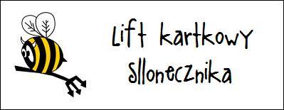 http://diabelskimlyn.blogspot.com/2016/01/lift-kartkowy-sllonecznika.html