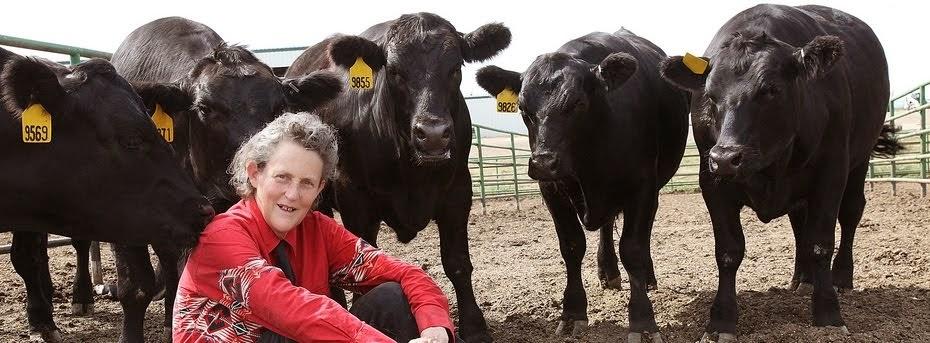 Temple Grandin - Autismus - Knihy o autismu