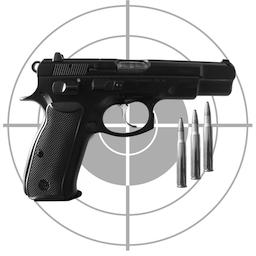 Gun Log +P