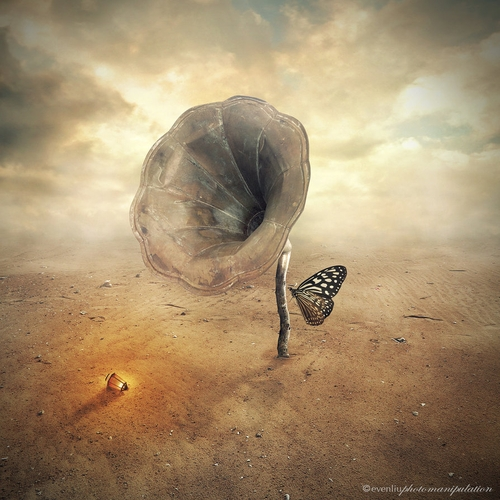 04-Flower-Even-Liu-Surreal-Photo-Manipulations-and-the-Lantern-www-designstack-co