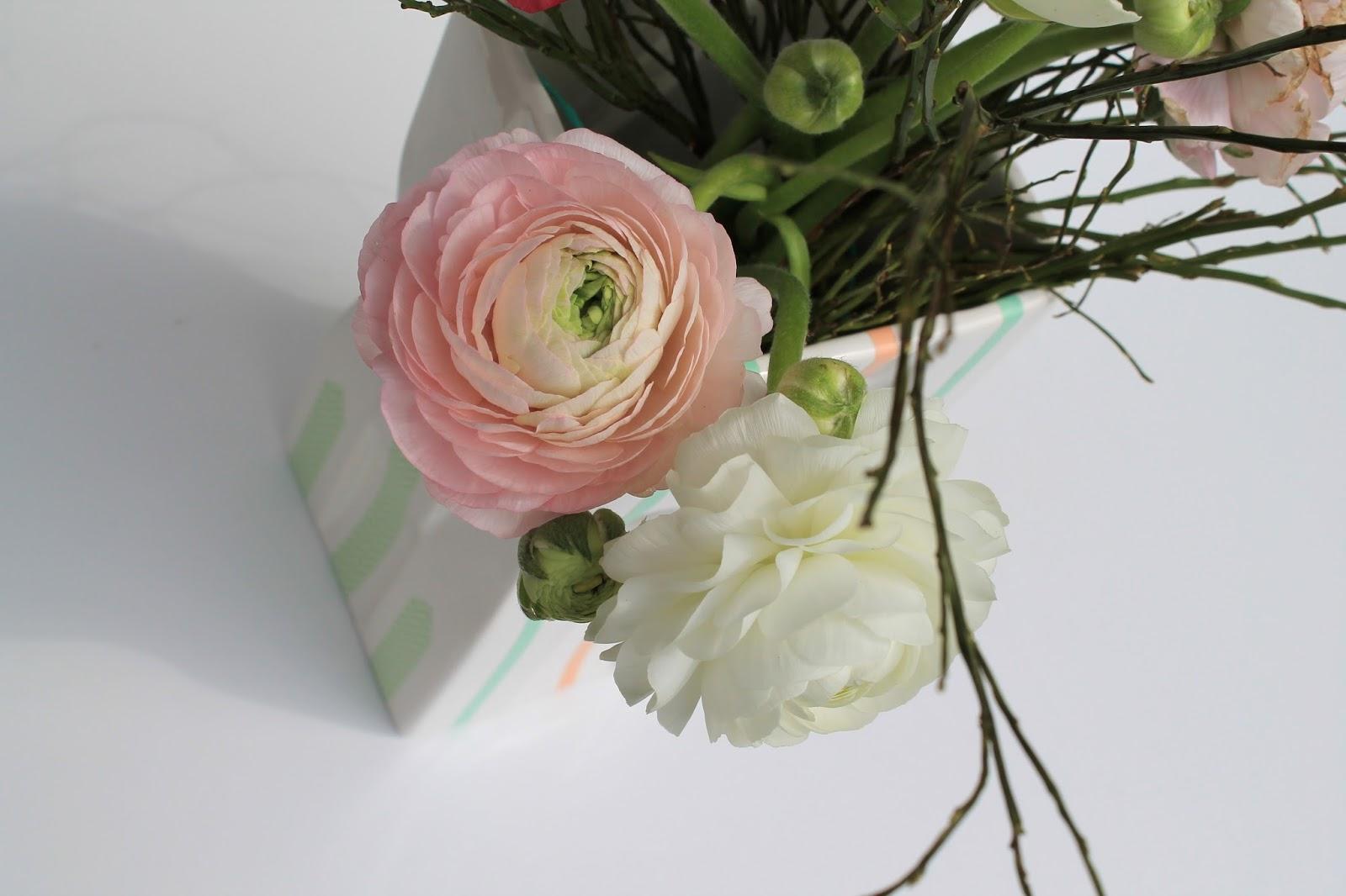 Rosa Ranunkeln Fruehling