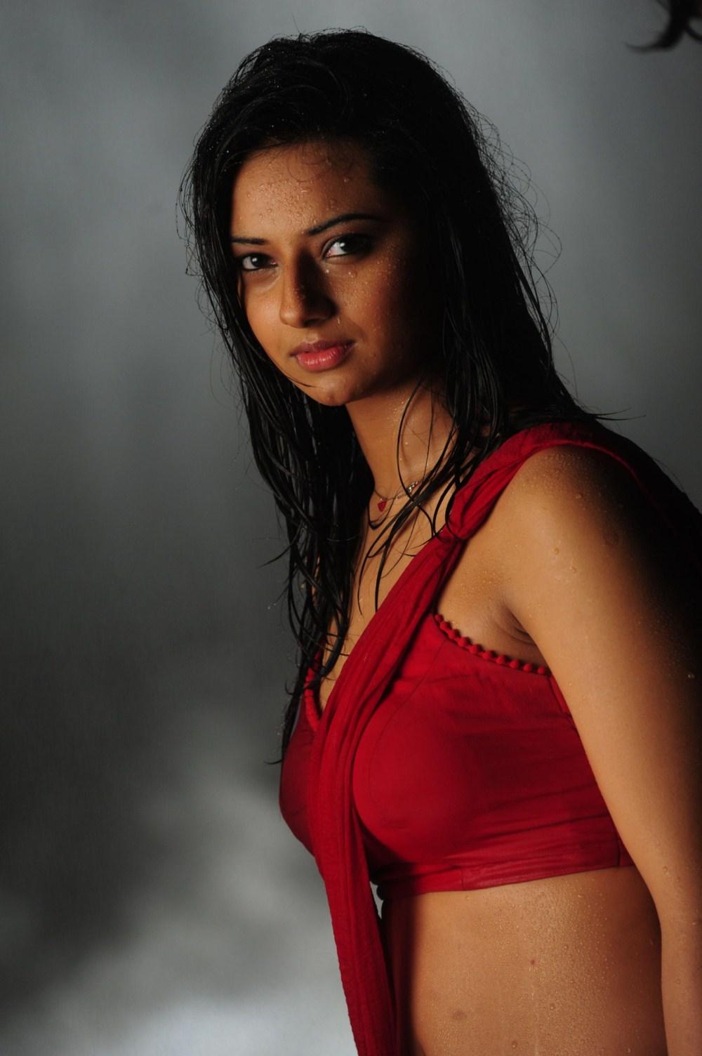Download this Isha Chawla Hot Wet Red Saree Stills Prema Kavali Movie picture
