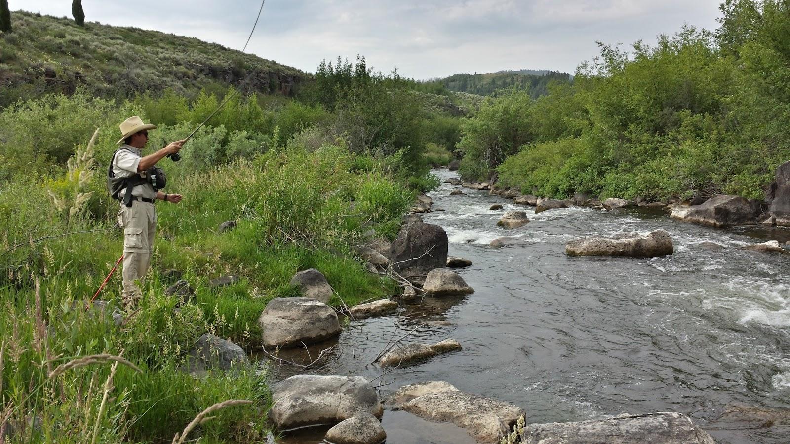 Idaho fly fishing for Idaho fly fishing