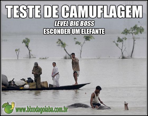 Teste de camuflagem - level Big Boss - Esconder um elefante
