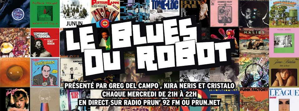 Le Blues Du Robot