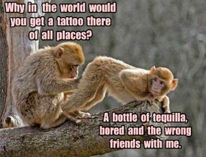 Why in the world would you get a tattoo there of all places? A bottle of tequila, bored and the wrong friends with me. Monkey meme