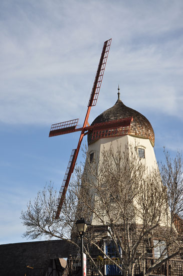 Solvang by Lady by Choice