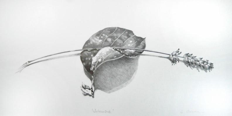 dibujo de Laia Arnau