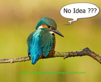 tidak ada ide untuk buat artikel blog ? ini dia tipsnya