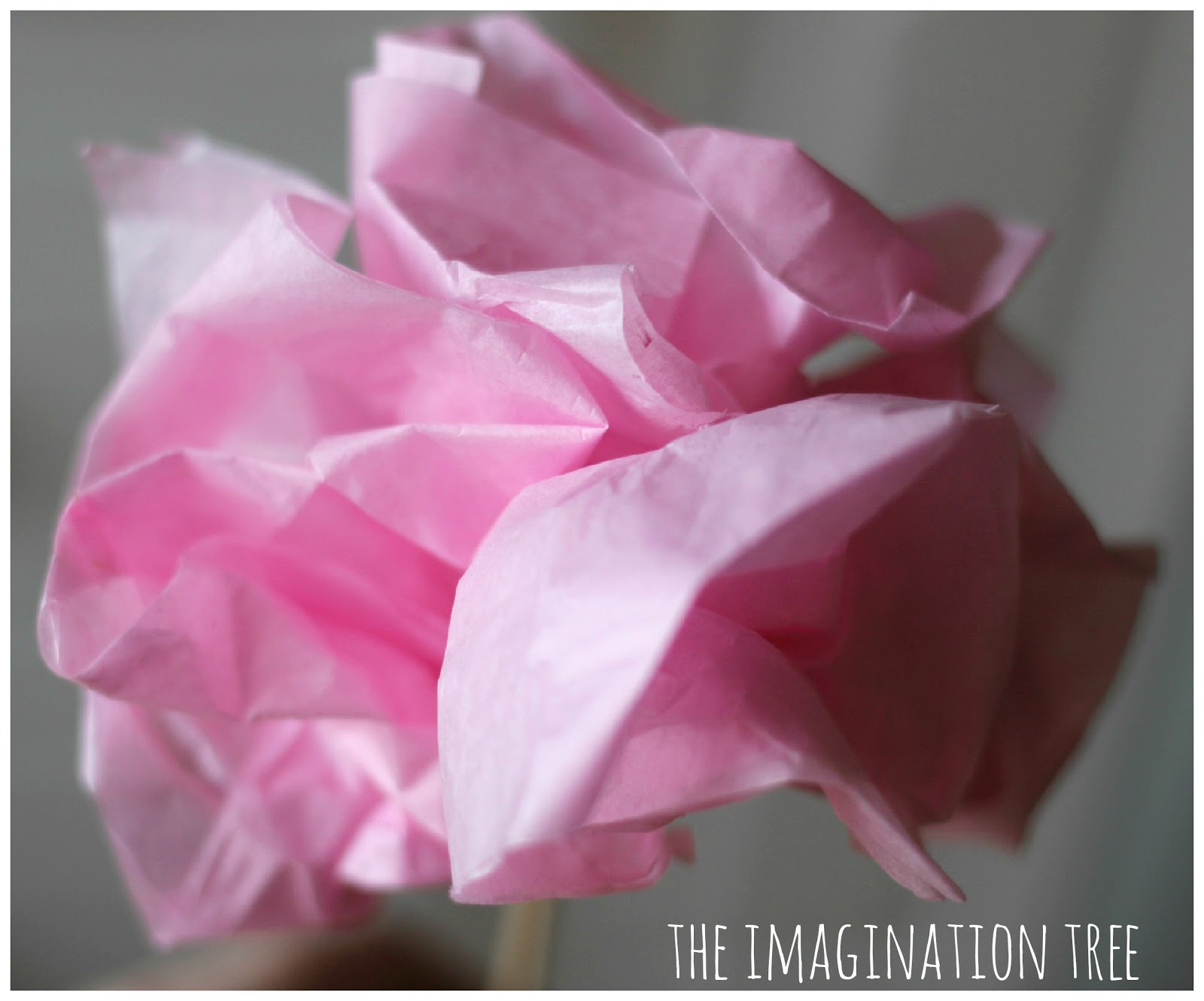 Tissue Paper Flowers The Imagination Tree