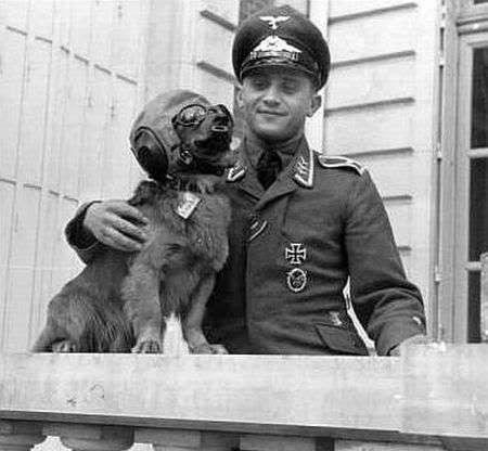 curiosas fotos de la segunda guerra mundial imperdible par 1
